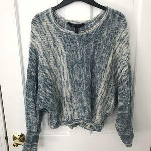 BCBG Max Azria blue/white sweater